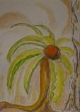 striding flower